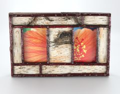 2 Pane 5 x 7 Birch Bark Picture Frame