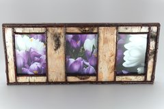 3 Pane 5 x 7 Birch Bark Picture Frame