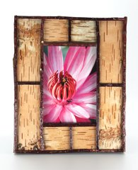 5 x 7 Birch Bark Picture Frame