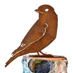 B716 Blue Bird