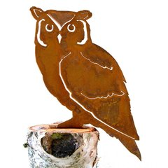 B727 Screech Owl