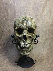 Templar Knight Theme Real Human Skull Replica Signed by Zane Wylie