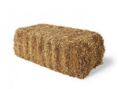 Straw Bale - Rice