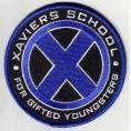 Pin Xaviers School For Gifted Youngsters