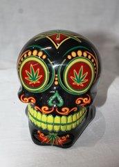 Money Box - Skull Candy Rasta
