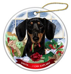 Holiday Ornament - I Can Explain