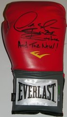 Deontay Wilder Signed Autographed Auto Red Everlast Boxing Glove w/And the New & Bronze Bomber - Proof