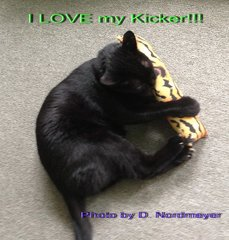Organic Catnip Kitty Kickers