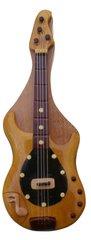 Bass Guitar Pic Box