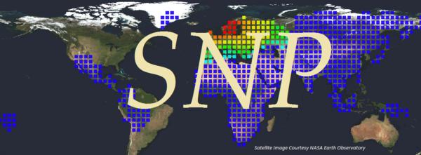 SNP Analysis (Grandparent Info Discount)