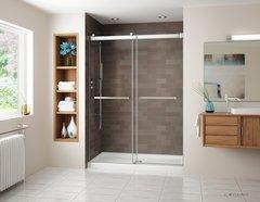Fleurco Gemini Frameless Bypass shower door