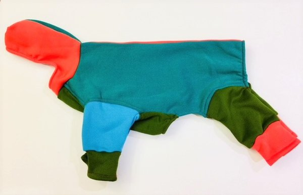 Water Resistant Colorblock Hooded Sweatshirt Jammies - Roomy Assorted Sizes