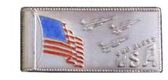 US Flag /F16s