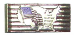 Flag/USA map