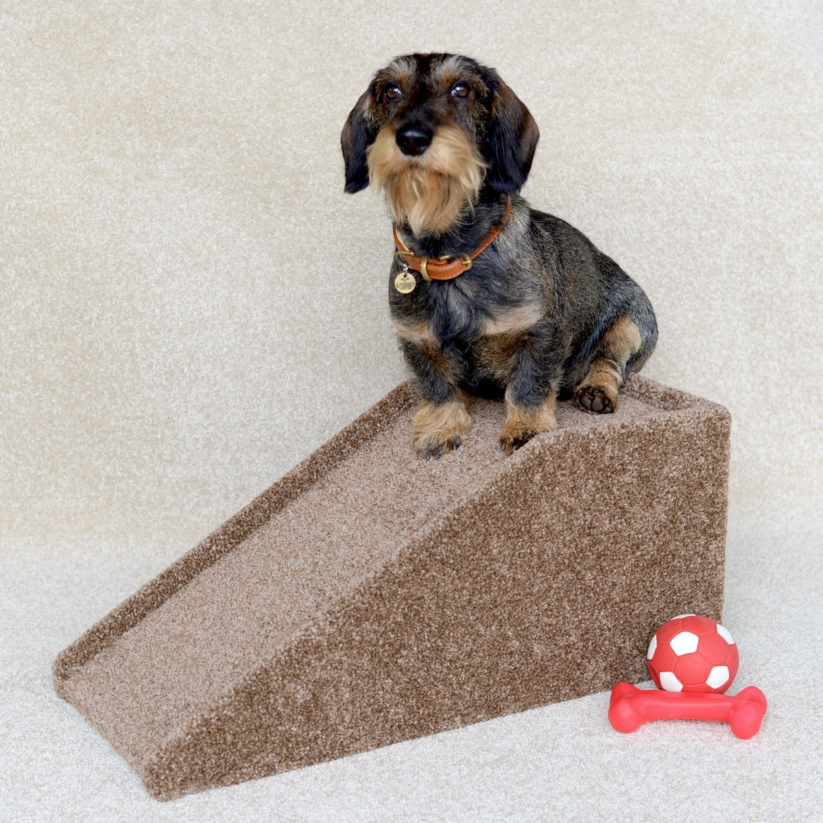 Pet Ramps For Dogs Reviews