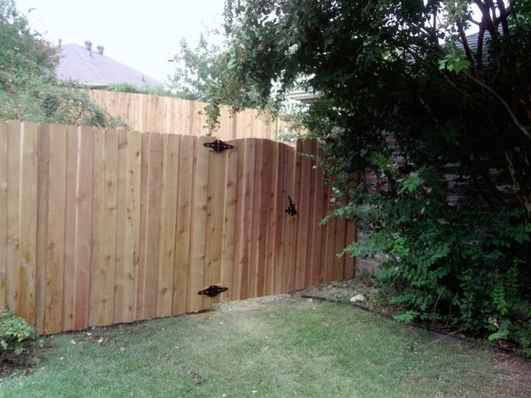 Ab 6 Foot Board On Board Cedar Don Goins Fencing