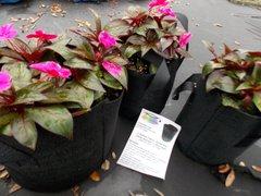 15 Gallon Fabric Grow Pot - Lot of Five (5)