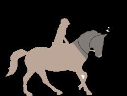 Equus Fly Veils, LLC
