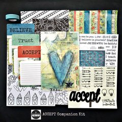 Documented Faith ACCEPT - Companion Kit