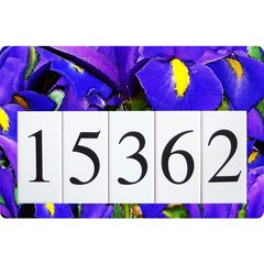 Iris Address Sign Large