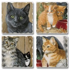 Barn Cats Absorbent Coaster Set