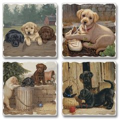 Friends For Life Absorbent Coaster Set