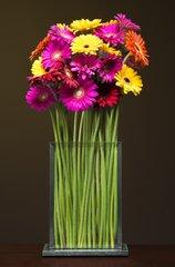 "STEMS Flower Vase 6"" Wide 9"" Tall"
