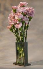 "STEMS Flower Vase 4"" Wide 6"" Tall"
