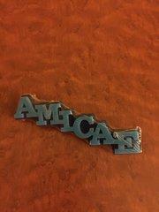 Amicae lapel pin