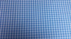 Light Blue Check