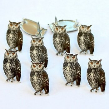 Sketched Owl Brads by Eyelet Outlet