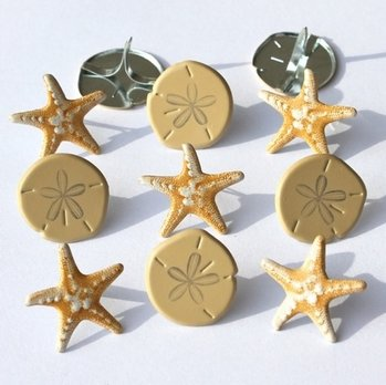Sea Shore Brads (Sand Dollars & Star Fish) by Eyelet Outlet