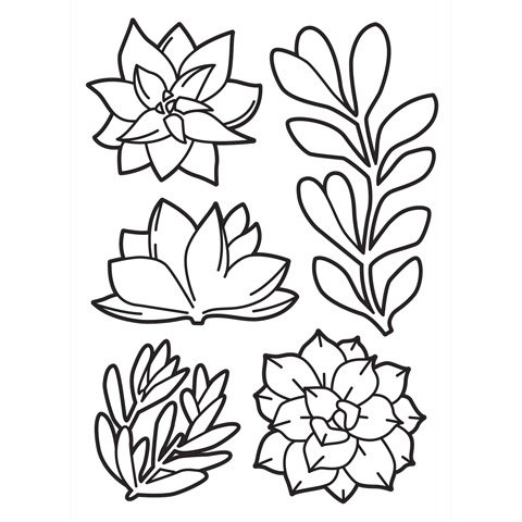 """Succulents Embossing Folder (4.25""""x5.75"""") by Darice"""