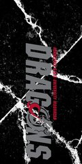 MSUM Dragons in Grey Cracks 1 on Black Dauphin™ Hard Rubber Case Phone Case