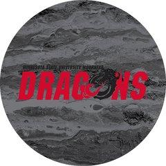 MSUM Dragons in Red Black Dragon Concrete 2 on Black Sandstone Car Coaster