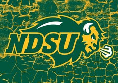"NDSU Primary Logo Cracks 1 8"" X 11"" Glass Cutting Board"