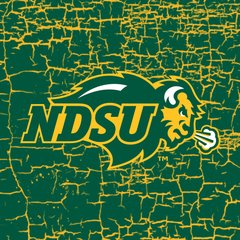 NDSU Primary Logo Cracks 1 Square Sandstone Coaster