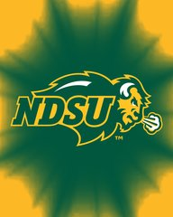 NDSU Primary Logo on Green Burst 1 Microfiber Card Caddy