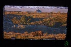 """7.5"""" x 5.5"""" Landscape Bison 1 Slate"""