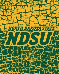 NDSU word Logo on Cracks 1 Microfiber Card Caddy