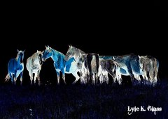Glowing Horses
