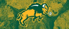 NDSU Body Logo on Stones 1 Rectangle Ring Stand™ Phone Holder