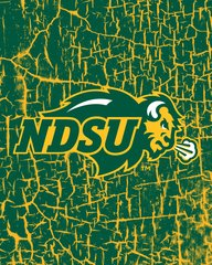NDSU Primary Logo on Cracks 1 Microfiber Card Caddy