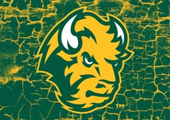 "NDSU Head Logo Cracks 1 8"" X 11"" Glass Cutting Board"