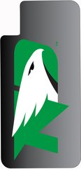 iPhone X UND Green Logo on Gradient 2 Dauphin™ Hard Rubber Case Phone Case
