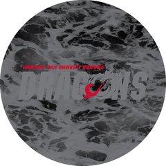 MSUM Dragons in Grey Water 1 on Black Sandstone Car Coaster