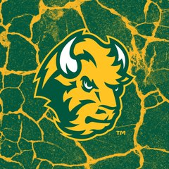 NDSU Head Logo Cracks 2 Square Sandstone Coaster