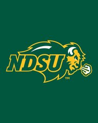 NDSU Primary Logo on Green Microfiber Card Caddy