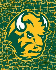 NDSU Head Logo on Cracks 1 Microfiber Card Caddy