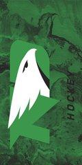 UND Hockey Concrete 1 on Green Dauphin™ Hard Rubber Phone Case